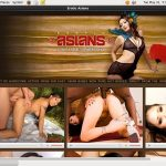 Erotic Asians Free Galleries