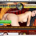 Ladyboy Ladyboy On Sale